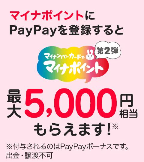 登録先決済サービスNO.1 マイナポイントはPayPayで