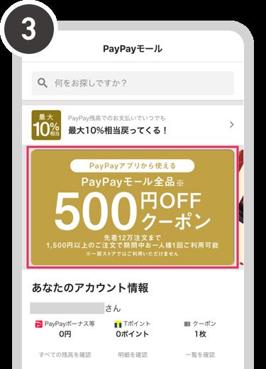 モール と は paypay