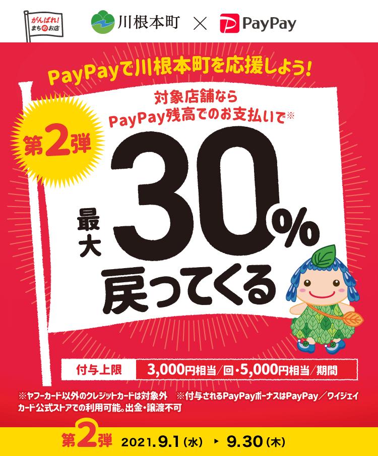 PayPayで川根本町を応援しよう! 第2弾 対象店舗ならPayPay残高でのお支払いで最大30%戻ってくる