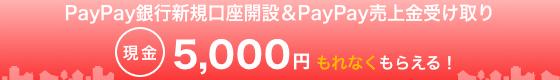 ジャパンネット銀行新規口座開設&PayPay売上金受け取り 現金5,000円もれなくもらえる