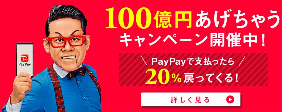 100億円あげちゃうキャンペーン開催中! ペイペイで支払ったら20%戻ってくる! 詳しく見る